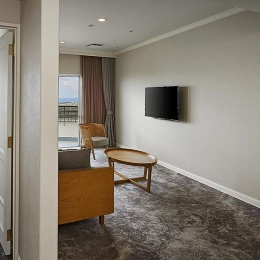 Executive Suite - Modern Living Room